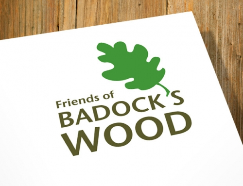 Bristol City Council: Friends of Badock's Wood