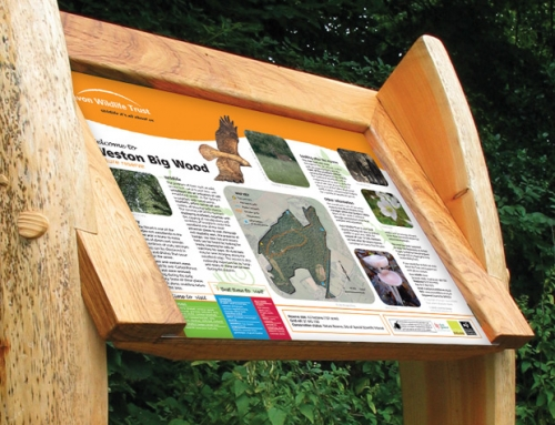 Avon Wildlife Trust: Weston Big Wood