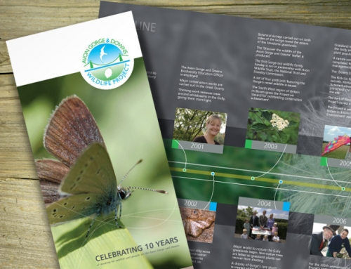 Avon Gorge & Downs Wildlife Project: 10th Anniversary Annual Review