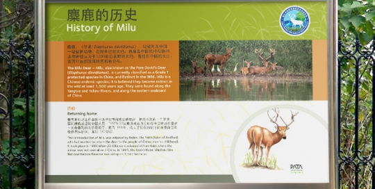 folio-sgn-milu-02